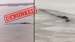 Screenshots of two different videos found on Chinese social media with the tag '#ThreeGorgesWaterMonster', circulating over the last few days.