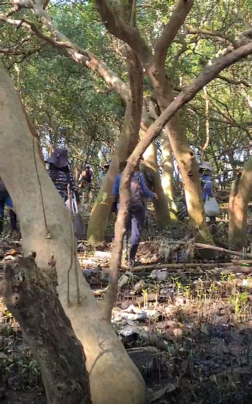 This video shows a group of birdwatchers in the Tanza mangrove forest. You can see the ground littered with plastic waste.