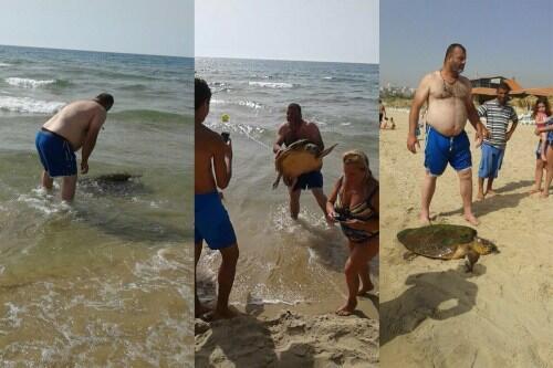 صورة مركبة نشرت على موقع المنظمة غير الحكومية GreenArea  يظهر فيها سائح يحمل سلحفاة من الأرض ويضعها على الشاطئ. وقد تم تداول هذه الحكاية عبر عدة وسائل تواصل. لكن الحقيقة ليست كذلك تماما.