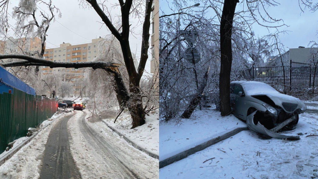 Images taken by Nikita show a road covered in ice with a broken tree looming overhead and a frozen, broken car.