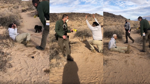 petroglyph park taser incident