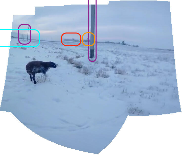 Panoramic view generated from the video