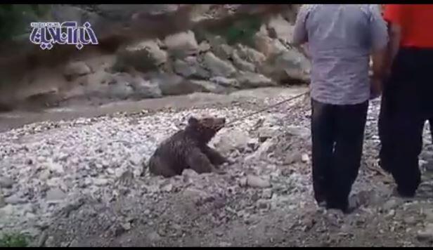 Capture d'écran de la vidéo / postée sur le site de l'agence Tasnim news