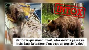 """L'histoire d'un homme """"retrouvé après un mois dans la tannière d'un ours"""" a été relayée par de nombreux médias. Mais elle est fausse."""