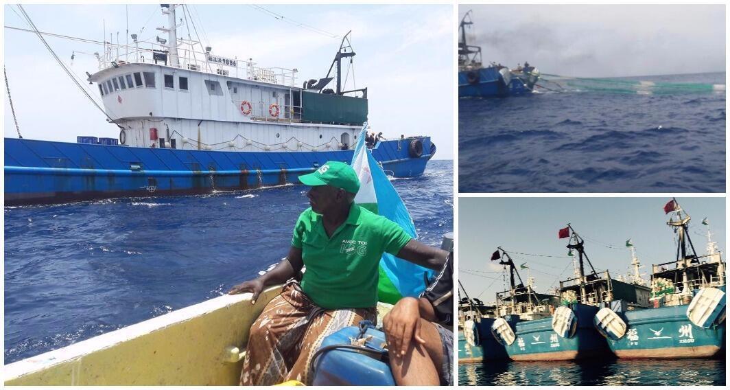 Les navires de la flotte Fu Yuan Yu photographiés par nos Observateurs à Djibouti.