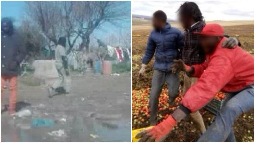 Migrant workers work in extremely difficult conditions for salaries much lower than the legal minimum under Italian law. (Photos from a resident of Rignano).