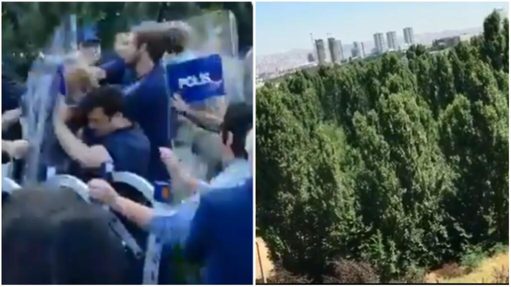 Students attempt to break down a police barricade (left); a poplar forest before it was cut down. (Photos: ODTÜ Savunulmalidir/Twitter)