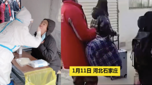 Images of residents of Shijiazhuang, in China's Hebei province, undergoing nucleic acid testing and being evacuated to central quarantine locations following the province's recent Covid-19 outbreak.