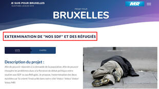 Screengrab of a controversial proposition posted on the site of the Belgian Reformist Movement (In French, Le Mouvement réformateur or MR).