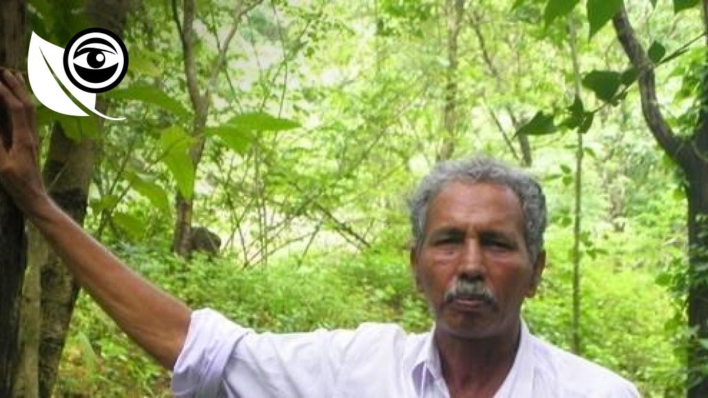 Abdul Kareem dans sa forêt, près de Kasaragod, au nord du Kerala.