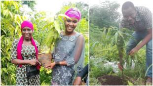 """Des participants au challenge """"un anniversaire, un arbre"""" à Conakry, en Guinée. Photos : ACOREC-Agir Contre le Réchauffement Climatique."""
