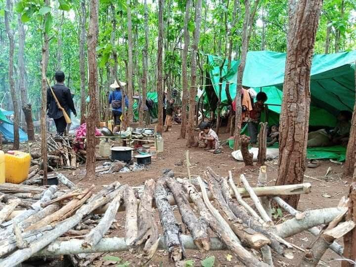 Following an increase in violence from military forces, people in Myanmar's Kayah State have been forced to flee their homes and create encampments in nearby jungles.