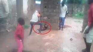 A young man kills a dog with a rod in the Central African Republic. Our Observer claims that this dog was stolen from its owner.