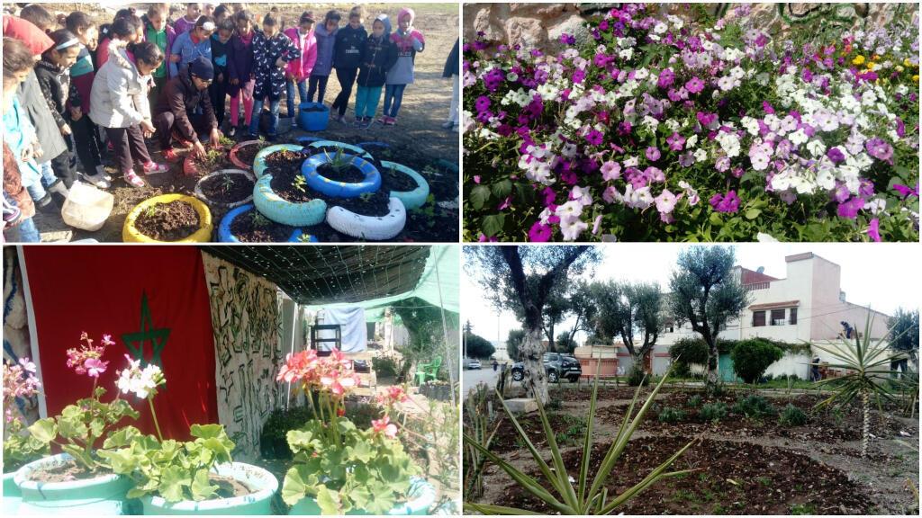 "Avec son association ""Le futur est vert"", Mohammed Adnan ElGuennouni fleurit sa ville de Sidi Kacem, au Maroc. Photos: Mohammed Adnan ElGuennouni."
