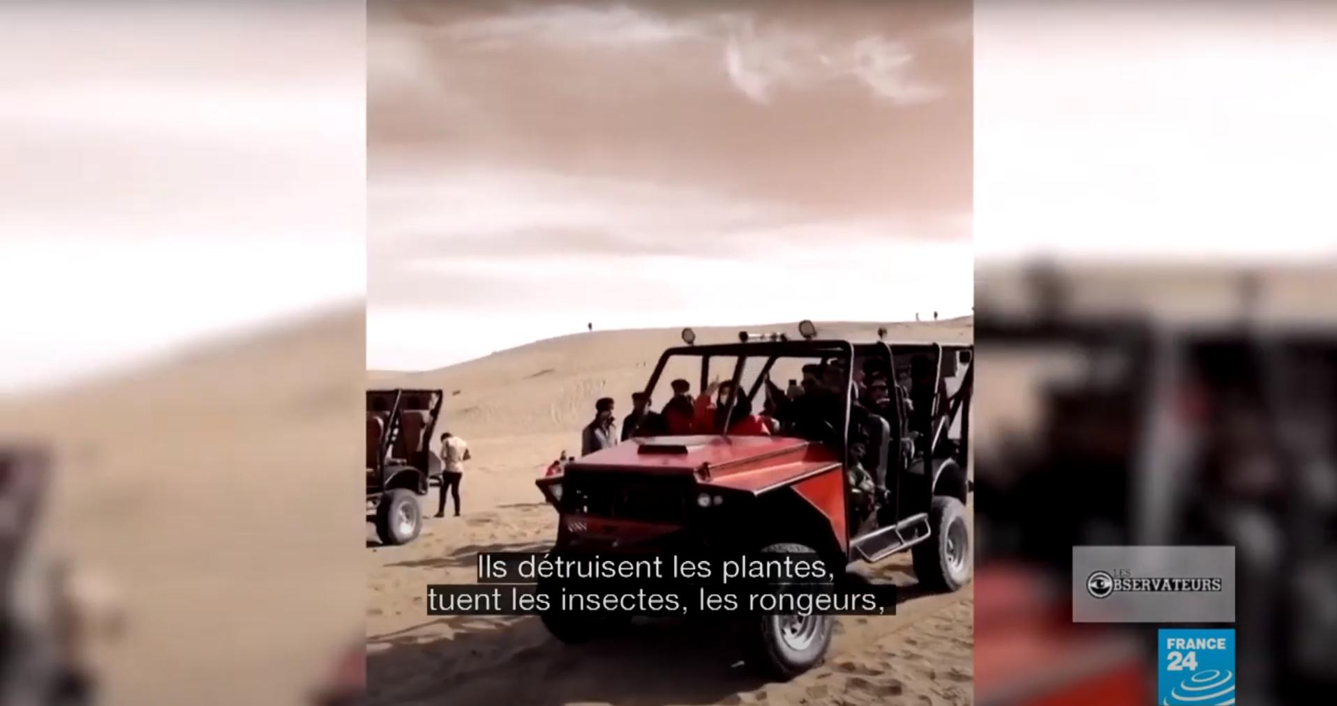 safarisiran
