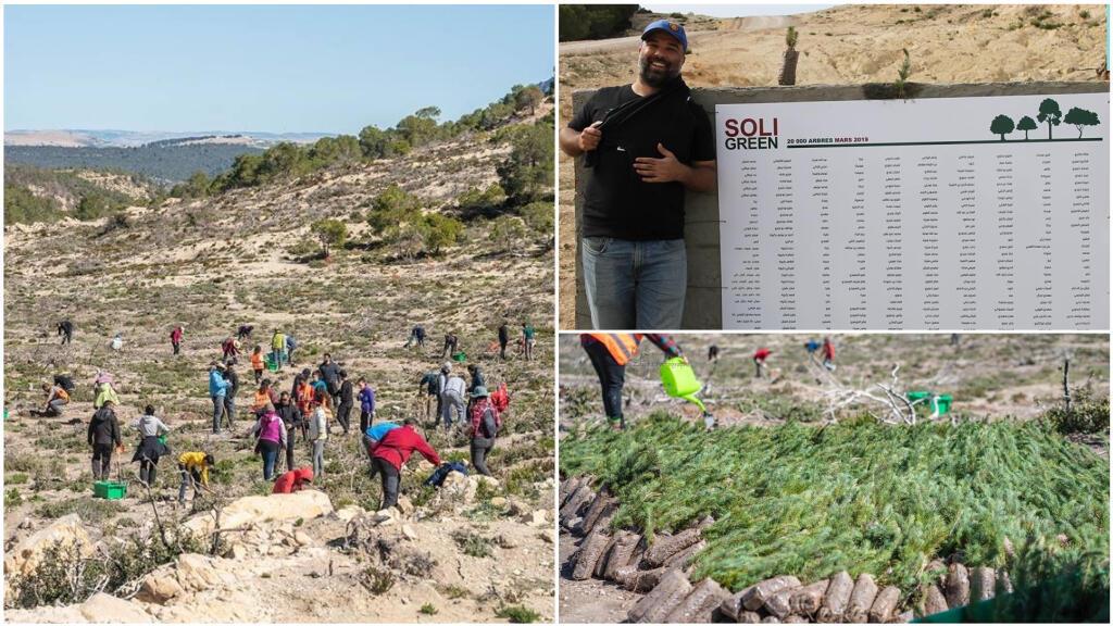Une opération de reboisement a été lancée par le collectif Soli&Green dans la forêt de Kesra en mars2019. Crédit photos: Soli&Green.