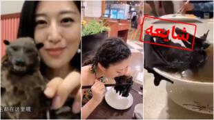 این تصاویر از ویدئوهایی گرفته شده است که از اواخر ژانویه بهطور گسترده در شبکههای اجتماعی منتشر شدهاند و میگویند چینیها سوپ خفاش که میتواند منشا ویروس کرونا باشد، میخورند.