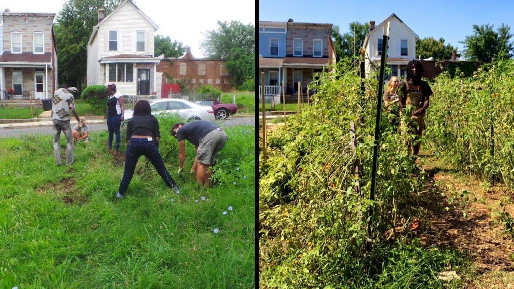 Boone Street Farm, une ferme urbaine de Baltimore, aux États-Unis. Photos publiées sur leur page Facebook, montrant comment était la zone avant, en 2014 (gauche), puis après, en 2016 (droite).