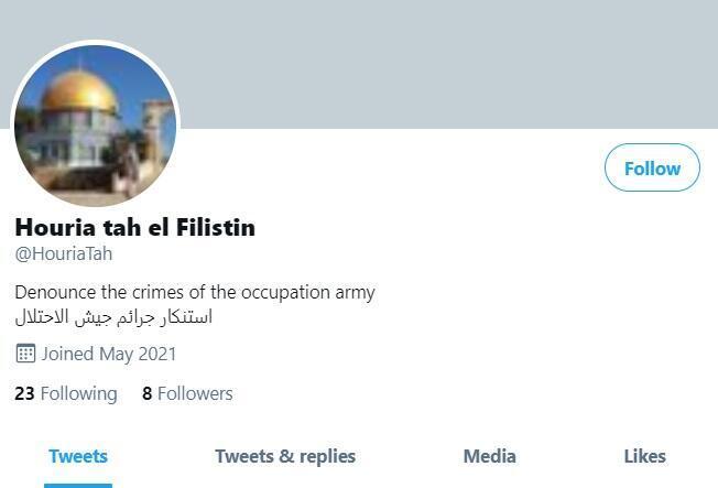 Au 26 mai, le compte @HouriaTah comptait seulement 8 abonnés et 23 abonnements pour un total de 14 tweets, dont 13 retweets.