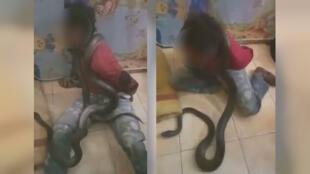 تصویری برگرفته از ویدئوی شکنجه متهم با مار