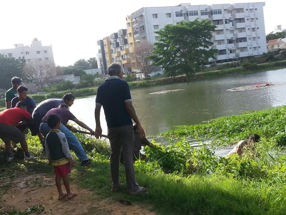 Notre Observateur et son équipe de bénévoles ont assaini le lac autrefois très pollué de leur quartier. Photo : page Facebook Akshaya nagara kere sutta mutta.