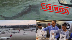 A shark swimming on the motorway; Houston airport underwater; and Obama helping the relief effort. Except... none of these are true.
