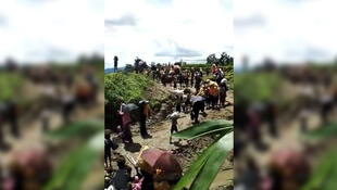 Screen capture of an amateur video showing a group of Rohingya trying to escape across the border with Bangladesh. Obtained via Facebook.