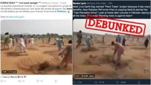 """ویدئوهایی که ادعا میکنند افراطیون پاکستانی در حال از ریشه درآوردن درختان هستند به این بهانه که کاشت درخت """"خلاف اسلام"""" است. اما این موضوع نادرست است."""