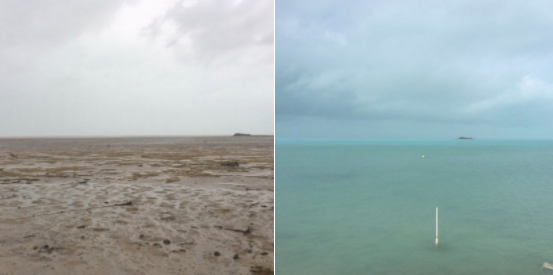 In the Bahamas, the sea was sucked back from the coast on Saturday, September 9. Photo: Twitter, @deejayeasya.