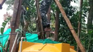 C.S. Satheesha built his treehouse singlehandedly, using materials around his house.