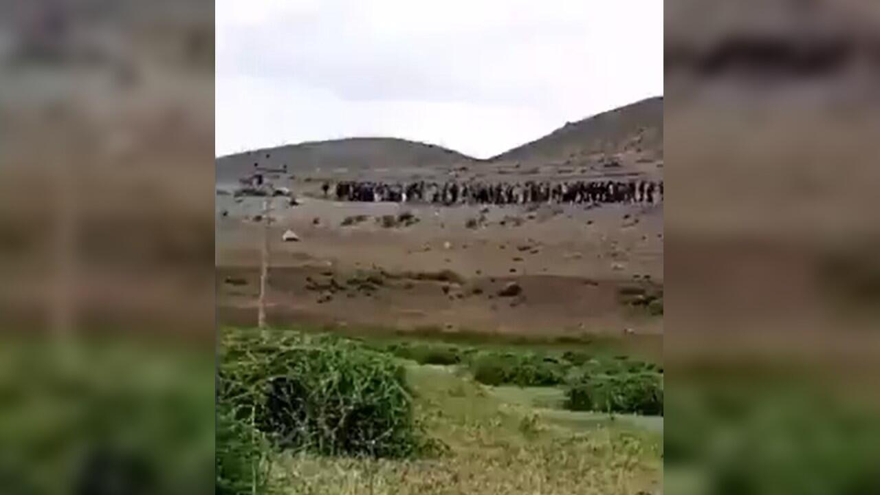 main turquie afghans