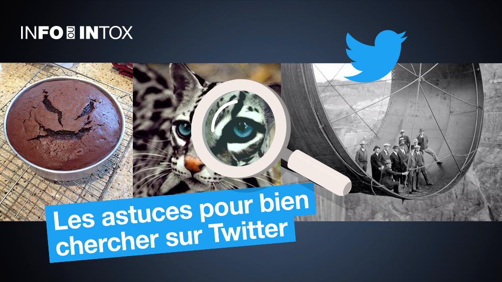 Pour bien chercher sur Twitter et éviter les intox, @PicPedant vous donne ses conseils.