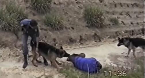 Capture d'écran de la vidéo relayée par des internautes pour dénoncer les violences policières en Espagne.
