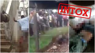 Vous avez peut-être vu circuler ces trois images, présentées comme des vidéos de violences xénophobes en Afrique du Sud. Mais elles n'ont pas été prises en Afrique du Sud.