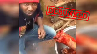 This video supposedly showed cannibalism occuring in the English-speaking part of Cameroon. However, it is totally fake (screengrab).