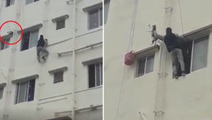 22-year-old Asrar Usmani climbing a building to save a cat trapped on a ledge in September 2019 (Credit: Twitter)