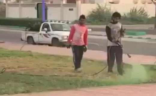 Capture d'écran de la vidéo montrant des employés municipaux teindre une pelouse en vert à l'occasion de la visite d'un émir local.