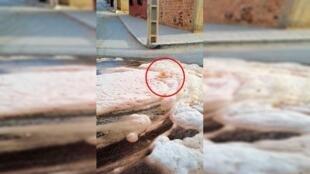 Une mousse orangée sort des égouts formant une bulle dans le quartier de Majd 1, à côté de la zone industrielle de Taourirt . Capture d'écran Facebook.
