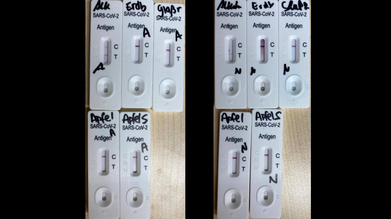 Les résultats d'un test antigénique Covid-19 sur différents éléments réalisée par son fabriquant, MEDsan. Photo transmise à l'AFP le 9 décembre 2020.