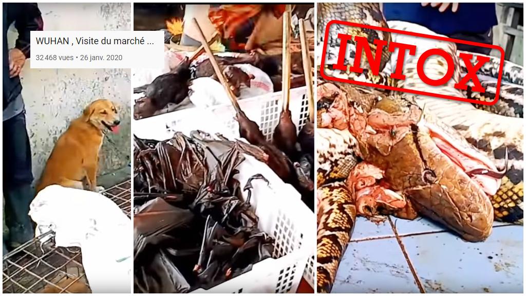 Capture d'écran d'une vidéo publiée sur YouTube, présentant ces images comme celles du marché de Wuhan, en Chine.