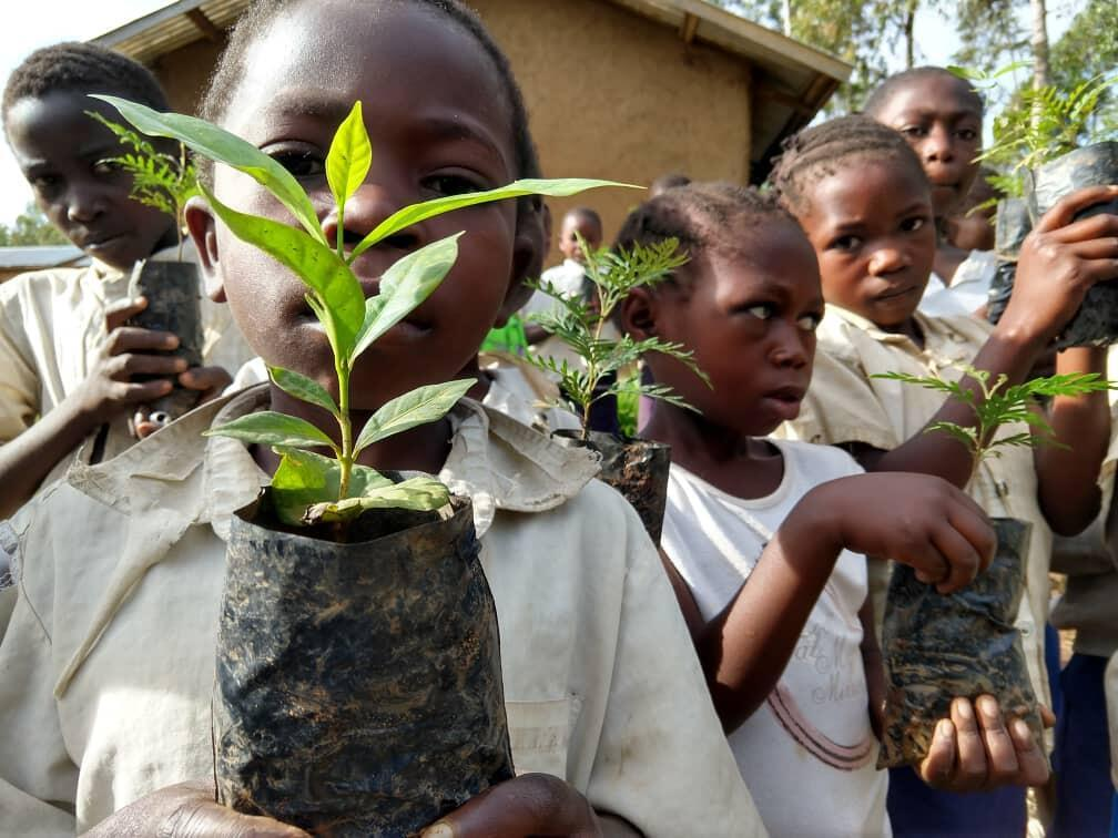 Schoolchildren in Nord Kivu with their seedlings that they are going to plant.