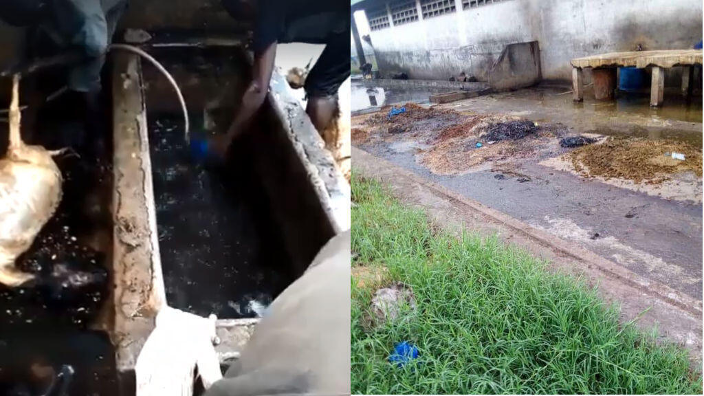 These photos, posted by Médard Koudébi, the president of the NGO Bénin Diaspora Assistance, show unhygienic conditions at a slaughterhouse in Cotonou.