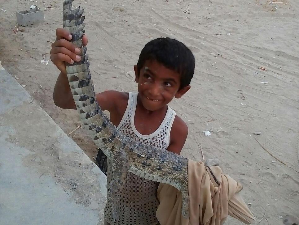 زكريا طفل إيراني عمره ثماني سنوات أنقذ تمساح مستنقعات صغير إذ قام بإخراجه من بحيرة جافة تماما. هذه القصة هزت مشاعر مستخدمي الإنترنت الإيرانيين.