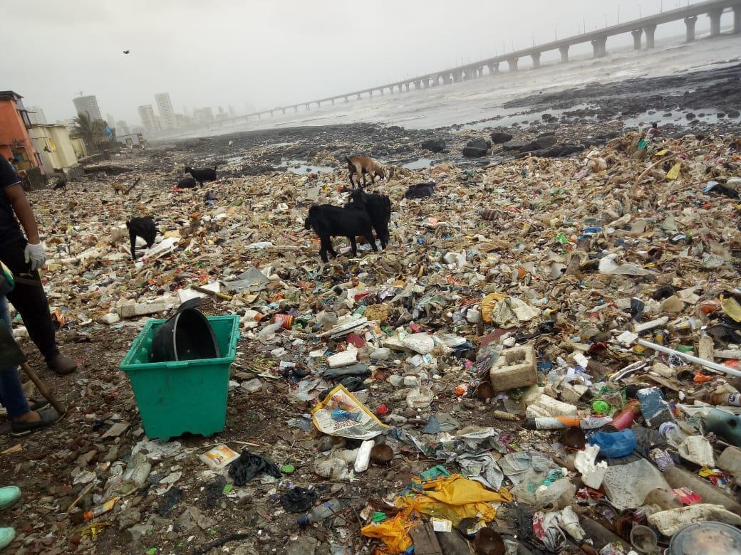 Des tonnes de déchets ont été renvoyées sur le bord de mer ces derniers jours après les fortes marées à Bombay. Crédit : Chinu Kwatra / Beach Warriors.