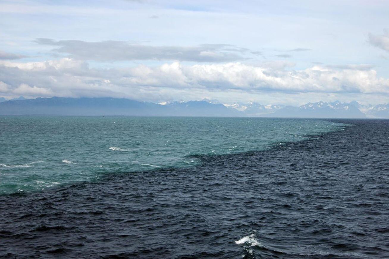 Rencontre océan Indien : une zone immense et stratégique
