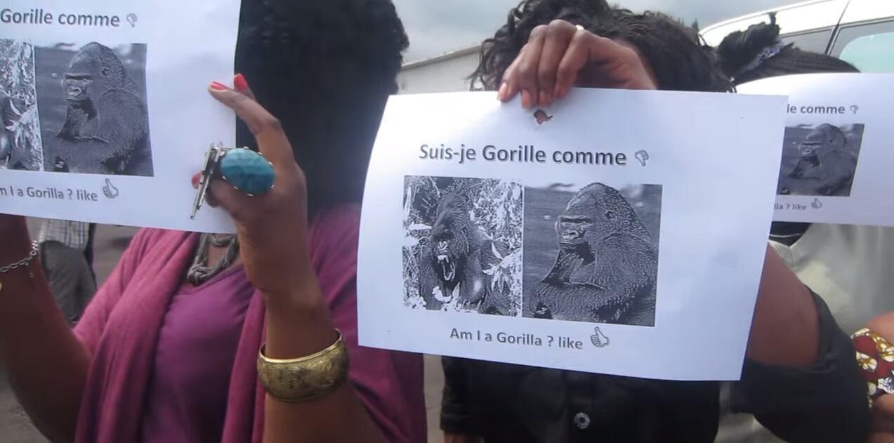 Des employés de la Monusco ont manifesté en tenant des feuilles de papier avec des images de gorille. Ils accusent l'un de leurs supérieurs de les avoir désignés par ce mot dans un email interne.