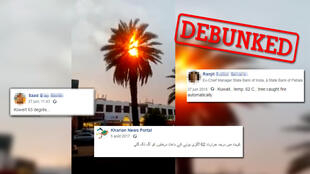 Social media users claimed that a palm tree had caught fire in Dubai due to extreme heat.