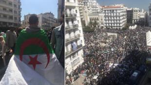 Photos des manifestations à Alger relayées sur les réseaux sociaux. Crédits : @SamarSmati (à gauche), @BouzidIchalalen (à droite).