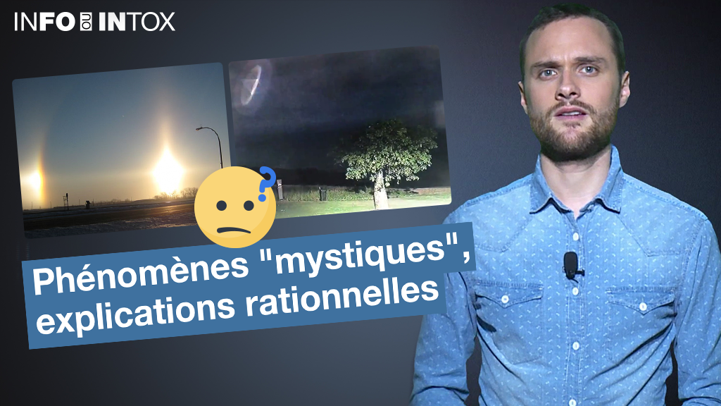 """Autour de deux exemples présentés comme des phénomènes étranges, """"Info ou Intox"""" vous montre comment la science permet d'éviter la diffusion d'intox."""