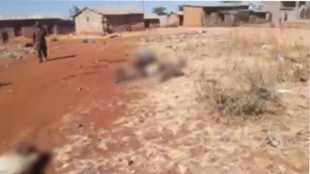Screengrab of the video, filmed in the village of Mai Harmaz in Tigray, early January 2021.